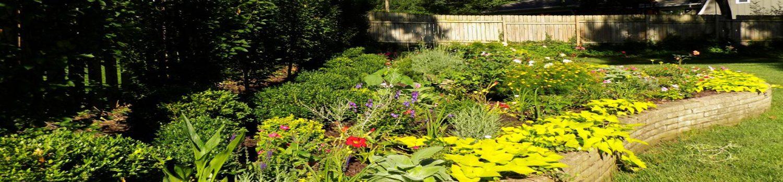 tammy garden