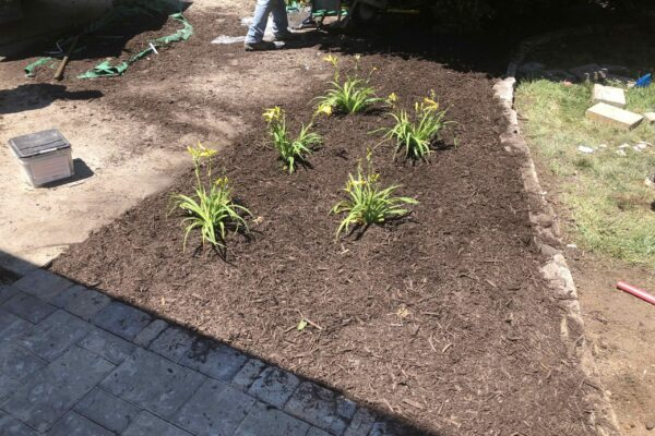 In Progress - New Flower bed next to new patio