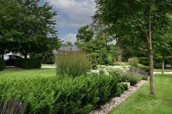 Johnson - Front Landscape Berm